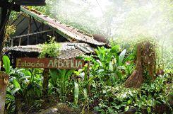 Der Regenwald in Costa Rica ist das Ziel von Simon Linke.   Foto: zVg Foto: Die Oberbadische