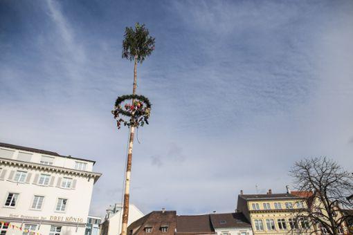 Impressionen des Narrenbaumstellens auf dem Alten Marktplatz. Foto: Kristoff Meller Foto: mek