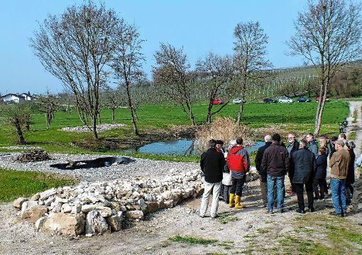 Die neue Grundgestaltung des Fischinger Biotops ist fertig angelegt.    Foto: Daniela Buch Foto: Weiler Zeitung