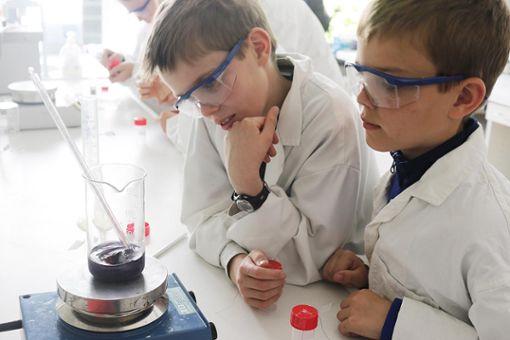 Das Phaenovum bietet in den Sommerferien ein vielfältiges Kursprogramm an.  Foto: Archiv Foto: Die Oberbadische