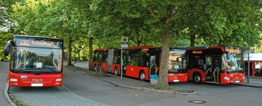 Der Busbahnhof ist die Drehscheibe: Hier laufen alle Rheinfelder Linien zusammen.  Foto: Ulf Körbs Foto: Die Oberbadische