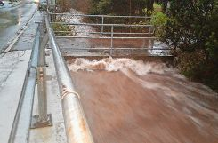 Wassermassen entlang der L 139. Foto: Markgräfler Tagblatt