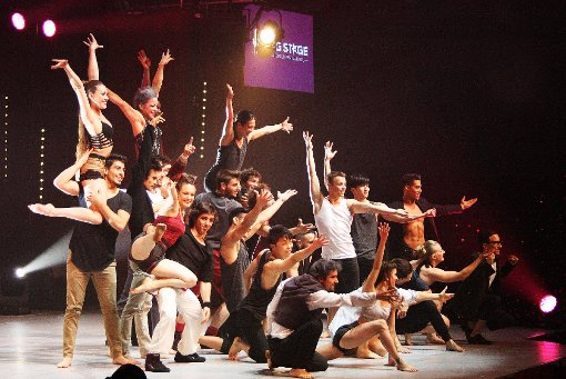 Schlussaufstellung bei der Premiere des Young-Stage-Circus-Festivals. Die Darbietungen überzeugten.    Foto: Markus Greiß Foto: Die Oberbadische