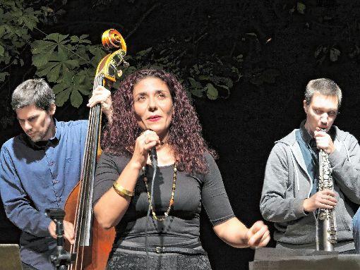 Houry Dora Apartian mit Saxofonist Adrian Pflugshaupt und Kontrabassist Patrick Sommer im Theater im Hof     Foto: Walter Bronner Foto: Weiler Zeitung