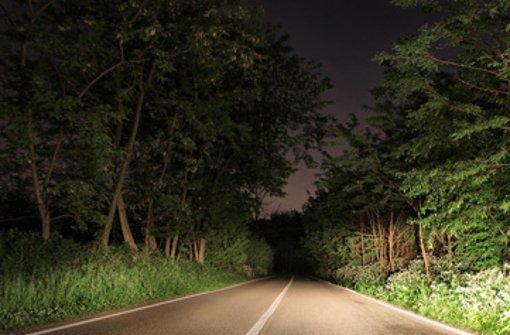 Während der Fahrt eingeschlafen ist ein 19-jähriger Autofahrer. (Symbolfoto) Foto: Shutterstock