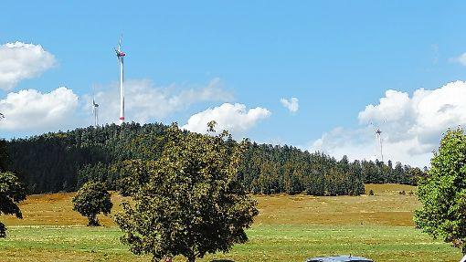 """Im Rahmen eines Erlebnisprogramms wird eine Wanderung zum Thema """"Forst und Windkraft""""  angeboten.   Foto: zVg Foto: Die Oberbadische"""