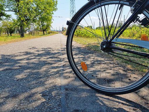 Der Stadtjugendring will für Verbesserungen für junge Radfahrer sorgen.   Foto: Fraune Foto: Weiler Zeitung