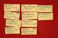 Im Plenum wurden abschließend die gesammelten Priorisierungen und Vorschläge diskutiert.   Fotos: Tim Nagengast Foto: Die Oberbadische