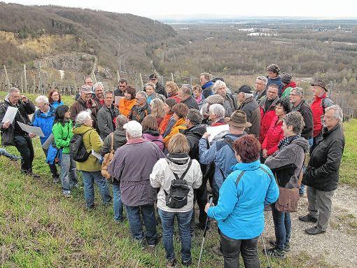 Eine große Wandergruppe erfuhr von Museumsleiterin  Maren Siegmann hoch über dem  Rhein, wo Felsenmühle und Neuenburg standen.   Foto: Jutta Schütz Foto: Weiler Zeitung