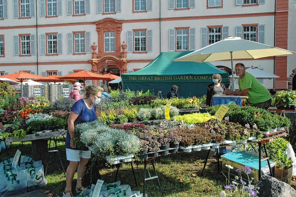 Flohmarkt Iffezheim