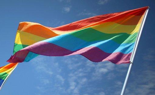 Die Interessen von Schwulen, Lesben Bi-, Trans-  und Intersexuellen sollen im Landkreis wieder mehr Berücksichtigung finden.                Foto: Archiv Foto: Die Oberbadische