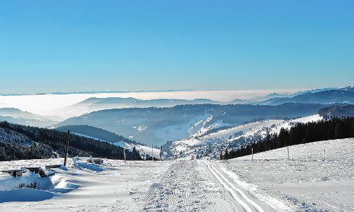 Eine Winterwanderung vom Feldberg über den Stübenwasen nach Todtnauberg plant der Schwarzwaldverein am morgigen Sonntag.  Foto: Paul Berger Foto: Markgräfler Tagblatt