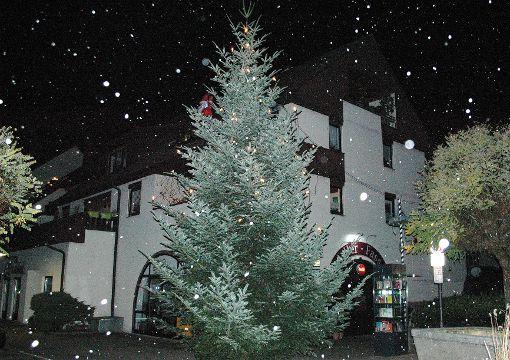 """Winterlich präsentiert sich der Stettener Weihnachtsbaum im Schneegestöber. Lange stand der Baum beim Dorfgasthaus """"Zum Sternen"""". Nun schmückt er als Weihnachtsbaum den Stettener Ortskern.    Foto: Ursula König Foto: Die Oberbadische"""