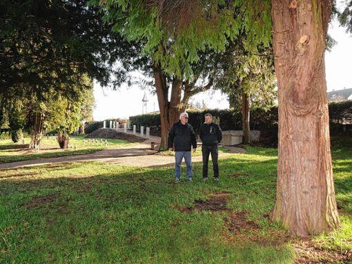 Ortsvorsteher Ino  Hodapp und Jürgen Schmid von der städtischen Friedhofsverwaltung vor dem ersten Baum, um den vorerst Plätze für zehn Urnen markiert wurden.    Foto: Hans-Jürgen Hege Foto: Markgräfler Tagblatt