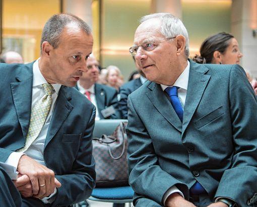 Wolfgang Schäuble hat sich öffentlich für Friedrich Merz (links) ausgesprochen. Foto: Archiv
