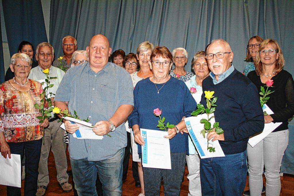 Steinen Einsatz Mit Ehrenmitgliedschaft Honoriert Steinen Verlagshaus Jaumann