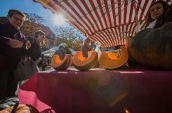 Das Lörracher Herbstfest war am Samstag im Wetterglück und lockte viele Besucher an. Foto: Kristoff Meller Foto: mek