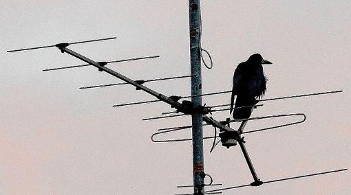 Nicht mehr auf Sendung: Über Antenne gibt es keine Fernsehbilder mehr.     Foto: Archiv Foto: Markgräfler Tagblatt