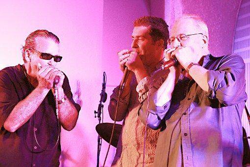 Spitzentreffen der Harmonicaspieler Foto: Weiler Zeitung