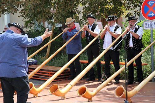 Impressionen vom zweitägigen Jubiläumsfest in Haltingen Foto: Siegfried Feuchter