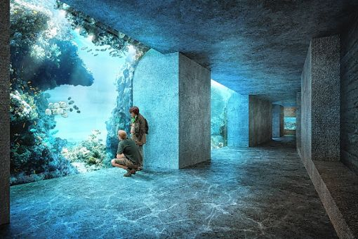 Am geplanten Ozeanium scheiden sich die Geister. (Illustration) Foto: zVg