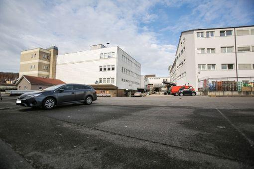 Das ehemalige Quelle-Areal in Haagen beherbergt rund 160  Mieter.   Foto: Kristoff Meller Foto: Die Oberbadische