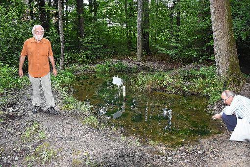 """Wolfgang Scharf (rechts) und Wolfgang Wostl kümmern sich um die Teiche unterhalb vom """"Dängeligeist"""". Diese Gewässer sind wertvolle und schutzwürdige  Amphibienlaichplätze.    Foto: Heinz Vollmar Foto: Die Oberbadische"""
