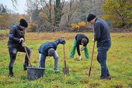 Engagieren sich im Naturschutz: Mitarbeiter der Basler Kantonalbank.   Foto: zVg Foto: Die Oberbadische