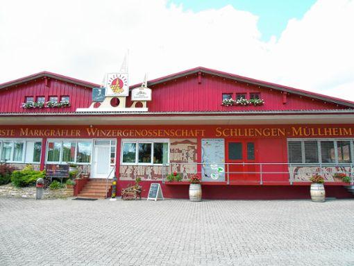 Die Auszahlungspreise an die Winzer der Schliengener Winzergenossenschaft sind weiter gesunken. Foto: ov