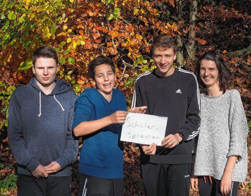 Das neue Schülersprecher-Team (v.l.): David Budde, Matthias Schoester, Daniel Rath und Lea Ehrensperger. Foto: zVg
