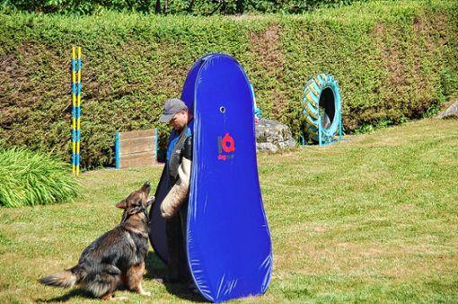 Die Ausbildung der Tiere spielt beim Hundesportverein Hausen eine wichtige Rolle. (Symbolbild) Foto: Archiv