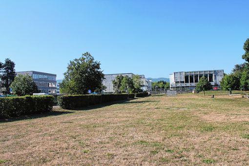 """Hier entsteht mit dem """"Stadthain"""" der zentrale Platz in Grenzachs künftiger Neuer Mitte. Foto: Tim Nagengast"""