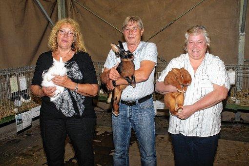 Vereinsmeister bei der Jungtierschau für Kaninchen wurde Toni Pertler (Mitte) vor Renate Beyer (r.). Mit dabei ist  Zuchtwartin für Geflügel, Brigitte Bieri, mit einem Kaninchen aus ihrer Zucht.  Geflügel wurde heuer nicht zur Bewertung ausgestellt.  Foto: Greiner Foto: Die Oberbadische