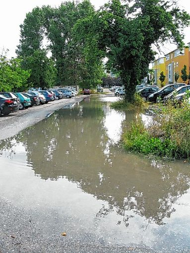 Hochwasser – hier im Rebland – kann teuer sein.  Foto: Archiv Foto: Die Oberbadische