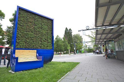 Die insgesamt 1682 Moostöpfe, die sich auf zwei Seiten auf einer Fläche von drei Mal vier Metern verteilen, binden so viele Feinstaubpartikel wie 275 Bäume. Foto: Kristoff Meller Foto: Kristoff Meller