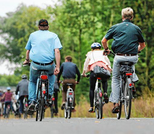 Im Landkreis sollen Radschnellverbindungen etabliert werden. Foto: Archiv