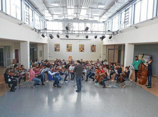 Das Orchester der Musikschule tritt am Samstag, 17. März,  im Schulzentrum Steinen auf.   Foto: zVg Foto: Markgräfler Tagblatt