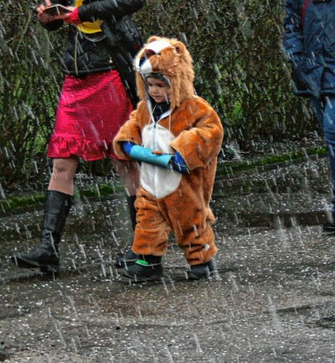 Dieser furchtlose Löwe ließ sich den Spaß nicht verderben. Foto: Markgräfler Tagblatt