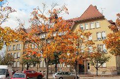 Der Campus bei der Friedrich-Ebert-Schule kann kommen: Der Gemeinderat billigte den Bebauungsplan einhellig.    Foto: Anja Bertsch Foto: Markgräfler Tagblatt