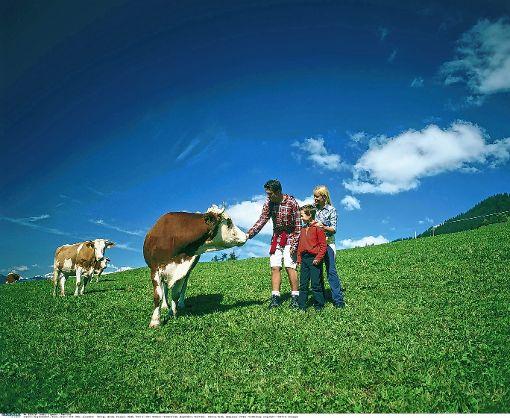 Beim Landschaftserhaltungsverband im Landkreis Lörrach stieg die Zahl der Verträge zur Landschaftspflege im vergangenen Jahr von 202 auf 270.   Foto: Archiv Foto: Die Oberbadische