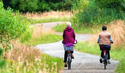 Für Freizeitradler und Fahrradtouristen soll die trinationale Region noch interessanter werden. Foto: Archiv
