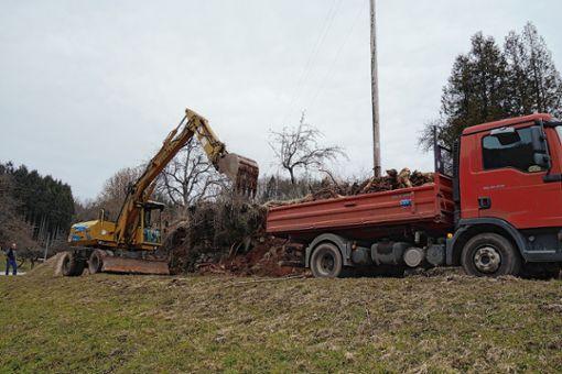 Die bröckelnde Mauer unterhalb des Friedhofs wurde beseitigt.   Foto: Gudrun Gehr Foto: Markgräfler Tagblatt
