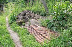 Alles andere als verwahrlost: Horst Spreen schafft in seinem Garten Strukturen, die Lebensräume sind. Foto: Weiler Zeitung