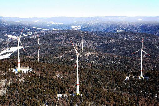Wegen des Rotmilans bitten die Windkraftgegner, die Genehmigung für die Windparks in Gersbach vorübergehend auszusetzen.    Archivfoto: Erich Meyer Foto: Markgräfler Tagblatt