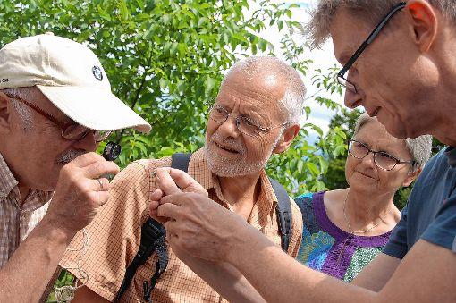 Andreas Lang (rechts) vom Naturschutzbund Lörrach leitete die Schmetterlingsexkursion.   Foto: Petra Wunderle Foto: Die Oberbadische
