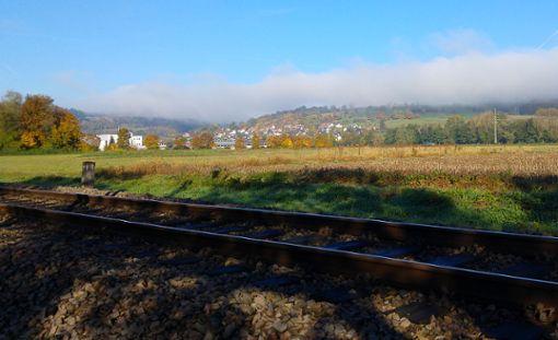 Bislang existiert  nur ein Bahngleis beim künftigen Standort des Zentralklinikums. Foto: Kristoff Meller