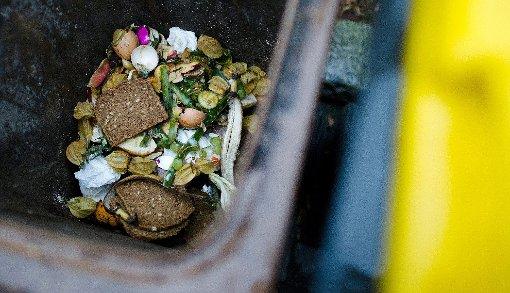 Der Biomüll wird nun getrennt gesammelt, doch weitere Veränderungen wie die Wertstofftonne sind schon im Blick.   Foto: Archiv Foto: Die Oberbadische