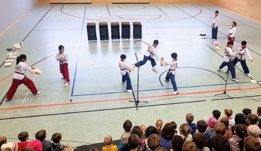 Vor allem die Taekwondo-Aufführung beeindruckte die deutschen Kinder. Foto: zVg