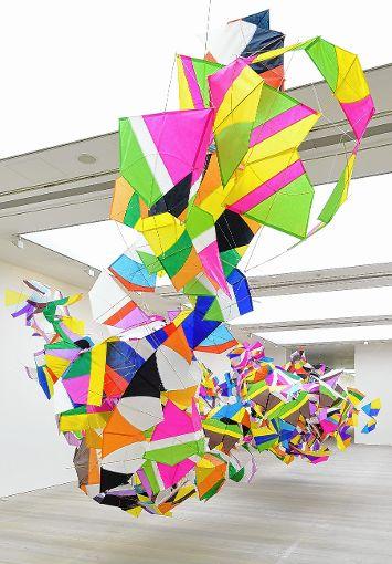 Arbeit  des brasilianischen Künstlers in Basel   Foto: zVg/Drake Foto: Die Oberbadische