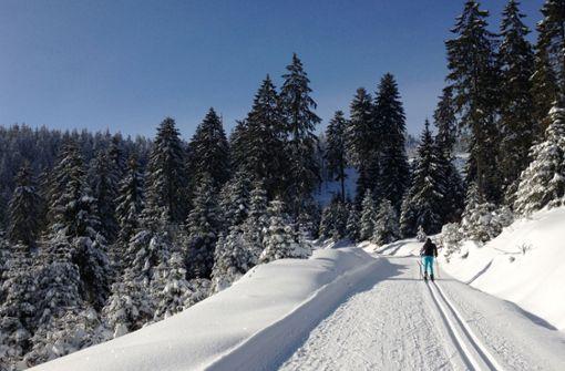 Auf der Hornisgrinde sitzen zwölf Skifahrer fest. (Symbolfoto) Foto: dpa